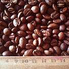 HoReCa купаж кофе 1 кг Uno Plasuare 50% арабика / 50% робуста средняя обжарка SV Caffe, фото 8