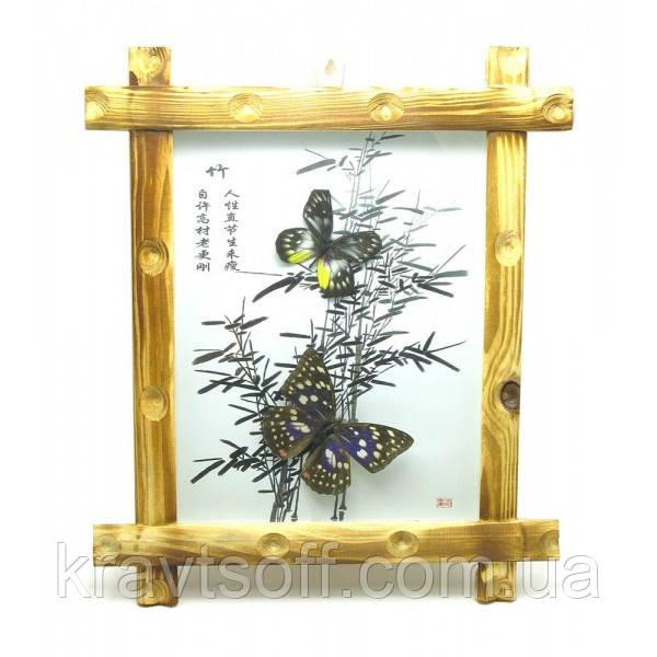 Бабочки в деревянной рамке на фоне (34х29х4 шт) (25978)