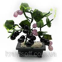 Виноградная лоза (16х12х8 см) (21164)
