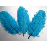 Перо страуса Цвет Бирюзово голубой 18-25см, фото 2