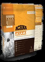 Сухой корм ACANA (АКАНА) PUPPY LARGE BREED корм для щенков крупных пород 17 кг