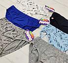 Детские трусики плавки для мальчиков 4-5 лет 65581612767, фото 2
