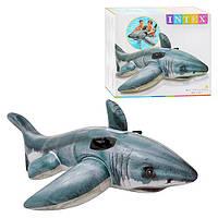 Плотик Intex 57525 акула, 173-107 см