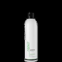 Шампунь Profi Style Repair Восстановление для поврежденных волос 250мл
