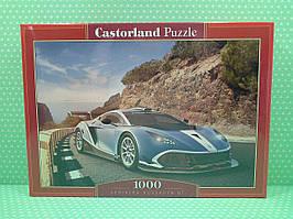 Пазлы 1000 элементов Castorland 104031 Arrinera Hussarya