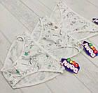 Детские трусики для девочек 2-3 года 6558161273236, фото 2