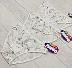 Детские трусики для девочек 8-9 лет 6558161273236, фото 2