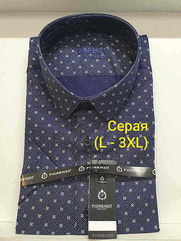 Рубашка с коротким рукавом Fiorenzo classic с принтом, фото 2