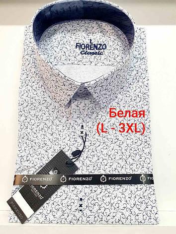 Сорочка з коротким рукавом Fiorenzo classic з принтом, фото 2