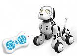Интерактивная собака робот ZOOMER Код/Артикул 9007A, фото 3