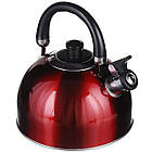 Чайник зі свистком для плити нержавійка A-PLUS 3 л, фото 3