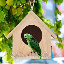 Передержка попугаев, канареек, амадин