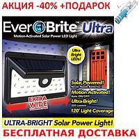 Светильник настенный Ever Brite 24 LED EB24-4F Solar с датчиком движения солнечной панели 2434460