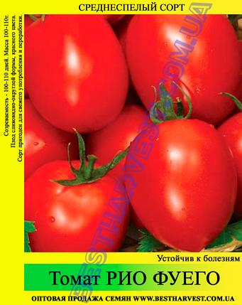 Семена томата Рио Фуего 0,5кг, фото 2