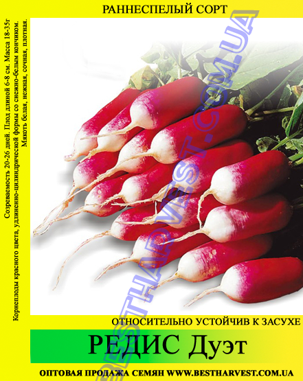 Семена редиса Дуэт 1 кг