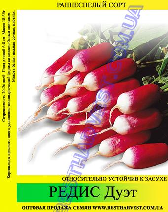 Семена редиса Дуэт 1 кг, фото 2