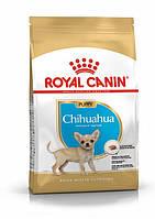 Royal Canin Chihuahua Puppy (Роял Канин Чихуахуа Паппи) сухой корм для щенков