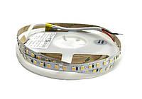 Світлодіодна стрічка  24вольт 8.6Вт 730лм теплобіла 2835-120-IP20-WW-8-24 RD08C0TC-B 2700K CRI80  Рішанг 13251