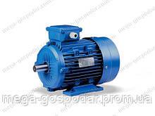 Электродвигатель 3 кВт, 1420 об.мин. 380 V, АИР 100L4Y2