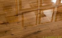 Глянцевый ламинат толщиной 8 мм Oster Wald Piano 33 класс Дуб Capper, фото 1