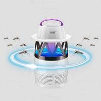 Ловушки для насекомых и липучки
