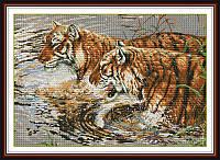 Набор для вышивания крестом NKF Тигры в реке 14ст D169