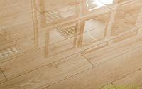 Ламинат покрытый лаком толщиной 8 мм Oster Wald Piano 33 класс Дуб Campanella, фото 1