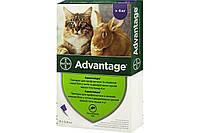 Краплі Bayer Advantage Адвантэйдж від бліх для кішок від 4 кг, піпетка 0,8 мл