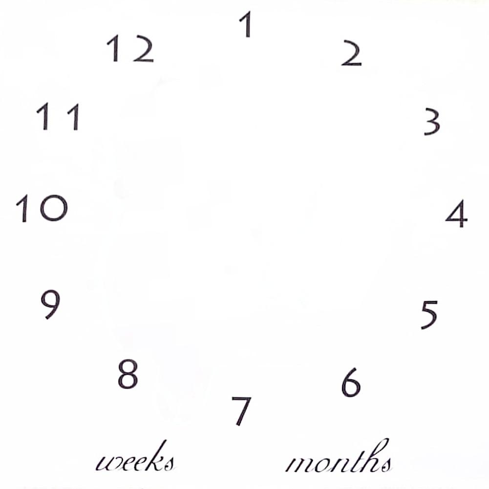 Пелюшка для фотосесій для новонародженого по місяцям 11