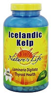 Natures Life, Icelandic kelp (250 таб.), келп, йод для щитовидной