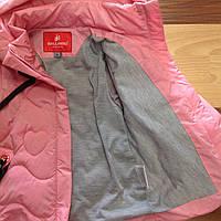Детская куртка  ветровка оптом 80-86-92-98-104, фото 1