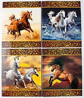 Комплект зошитів Міцар Ц262074У скоба 48 арк лінія офсет Дикі коні 15 шт 251544, КОД: 902387