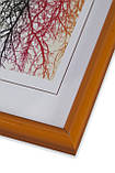 Рамка 10х15 из пластика - Оранжевая - со стеклом, фото 2