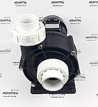 Насос для бассейна AquaViva LX WTB400T, 80 м³/ч, 3 фазы, фото 6