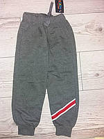 Спортивні штани для хлопчика сірі ZIMZIN  110,116,122,128,134,140,146