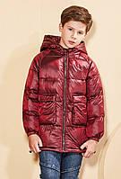 Куртка демисезонная детская Поинт, бордовый Berni