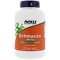 Эхинацея 400мг, Now Foods, Echinacea Purpurea, 250 капсул