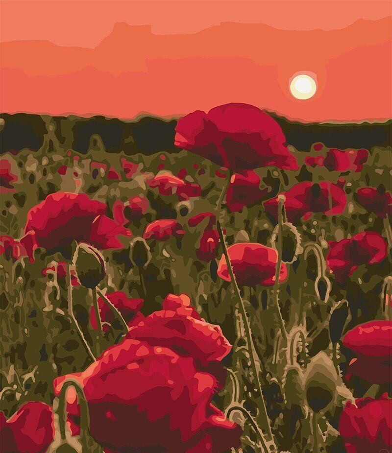 Картина за номерами Макова поляна КНО3579 40*50см Ідейка
