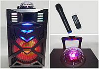 Автономная акустическая система с микрофоном WilliCo ZS-55 IP, с диско-шаром 300W (USB/FM/Bluetooth)