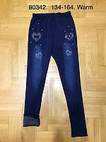 Лосины под джинс утепленные для девочек оптом, Grace, 134-164 см,  № G80342