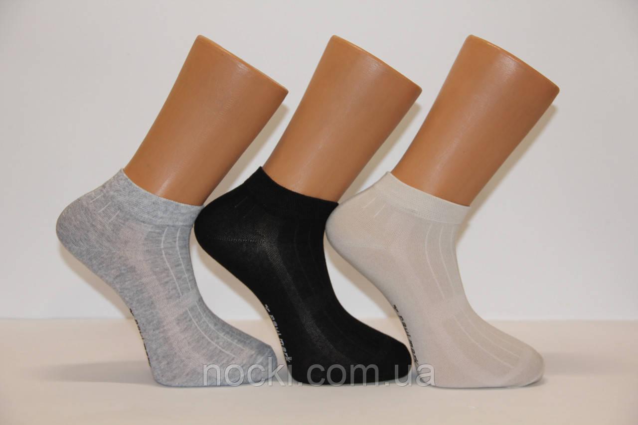 Мужские носки короткие с хлопка в сеточку Paul Mark ф17