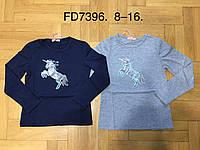 Реглан с легким начёсом для девочек оптом, F&D, 8-16 лет,  № FD7396