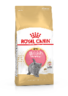 Royal Canin British Shorthair Kitten (Роял Канин Киттен британская короткошерстная) сухой корм для котят