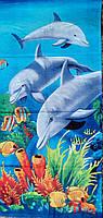 Пляжное полотенце Рыбки и дельфины