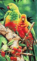 Пляжное полотенце Попугаи