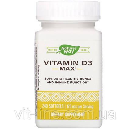 Nature's Way, Витамин D3, 5000 МЕ, 240 мягких таблеток, фото 2