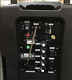 Колонка на аккумуляторе с беспроводным микрофоном Ailiang UF-1018 /100W (USB/Bluetooth/FM), фото 3