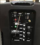 Колонка на акумуляторі з бездротовим мікрофоном Ailiang UF-1018 /100W (USB/Bluetooth/FM), фото 3