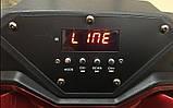 Колонка на акумуляторі з бездротовим мікрофоном Ailiang UF-1018 /100W (USB/Bluetooth/FM), фото 2