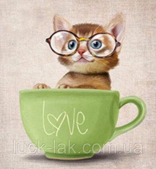 Алмазная вышивка котик в чашке 30х30 см